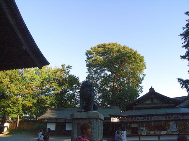 07-suwa60.jpg