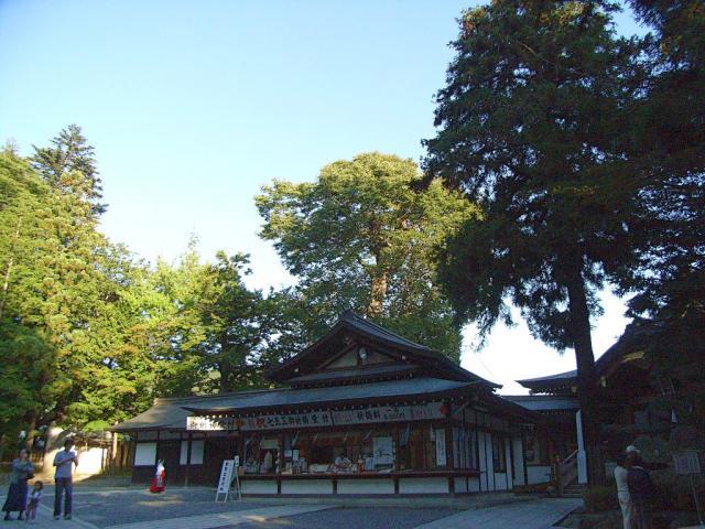 07-suwa61.jpg