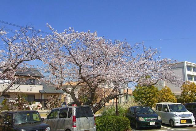 11-Spring23.jpg