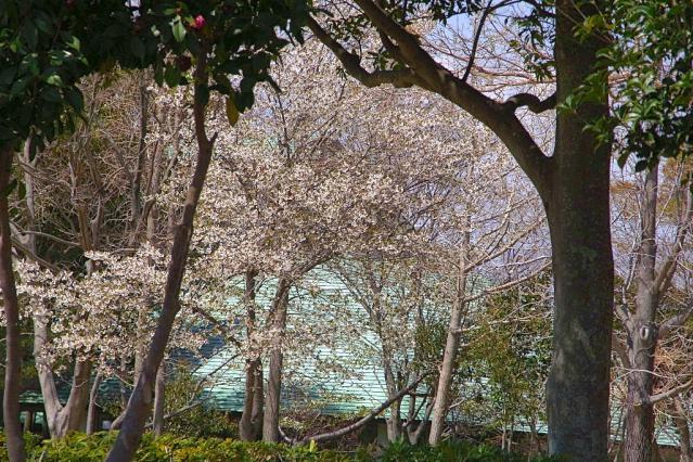 11-Spring32.jpg