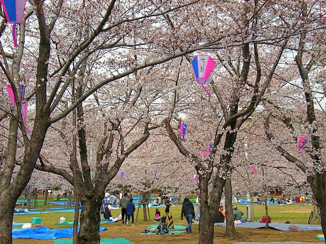 2006-Spring007.jpg