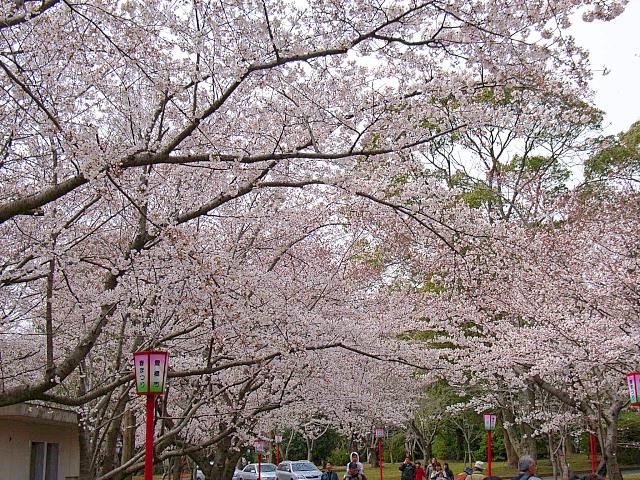2006-Spring009.jpg