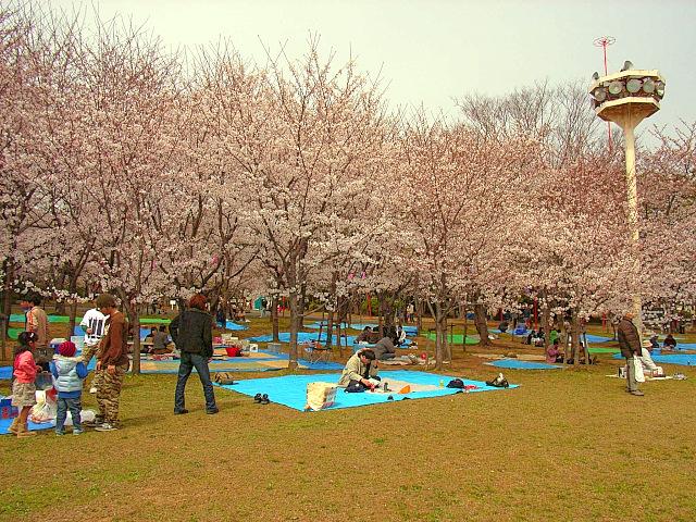 2006-Spring016.jpg