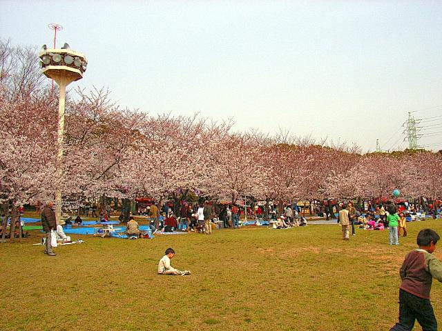 2006-Spring017.jpg