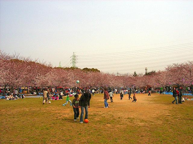 2006-Spring018.jpg