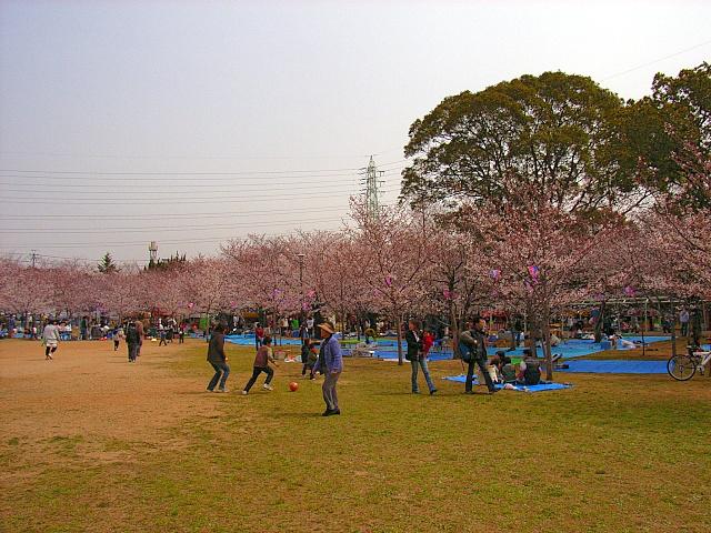 2006-Spring019.jpg