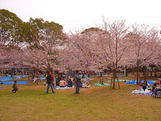 2006-Spring020.jpg