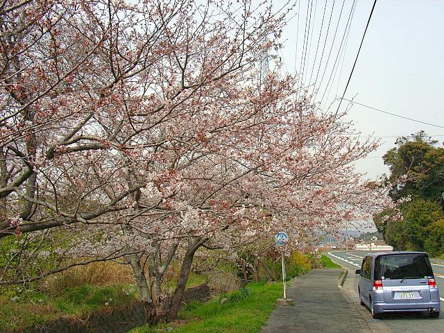 2006-Spring043.jpg