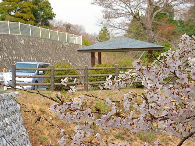 2006-Spring114.jpg