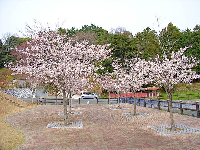 2006-Spring128.jpg