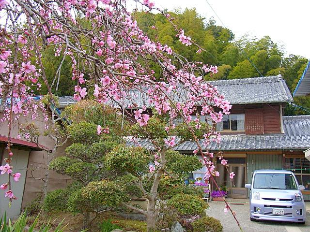 2006-Spring153.jpg