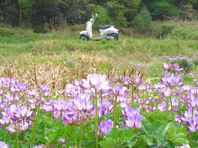 2007-Spring026.jpg