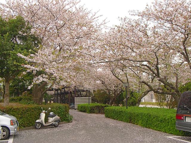 2007-Spring050.jpg