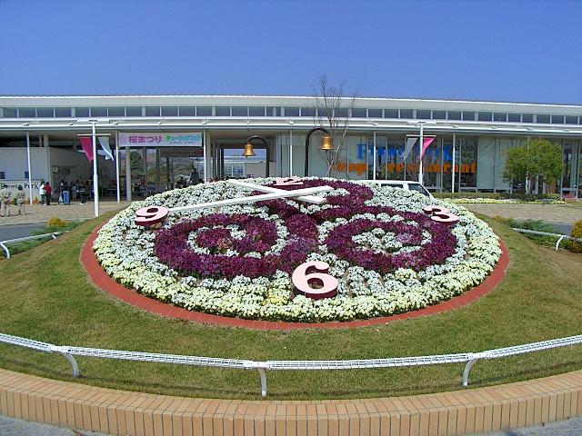 2008-Spring0013