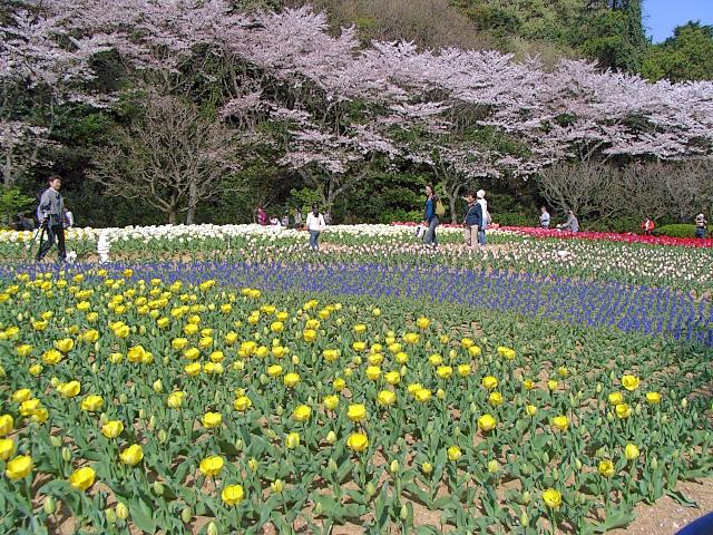 2008-Spring0058