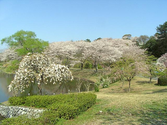2008-Spring0062