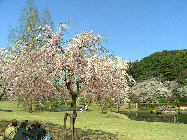 2008-Spring0068