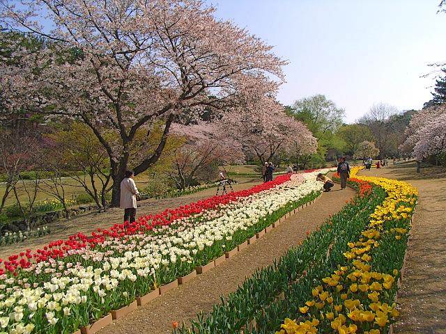 2008-Spring0071