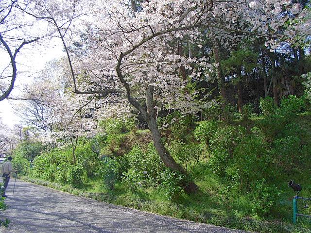 2008-Spring0086