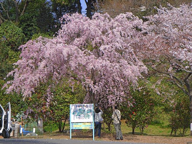 2008-Spring0088