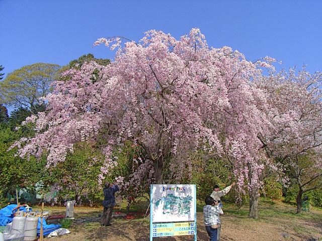 2008-Spring0090