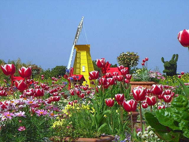 2008-Spring0096