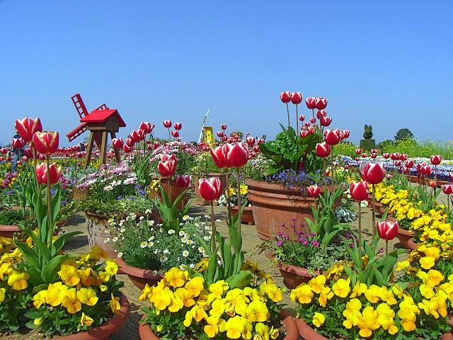 2008-Spring0097