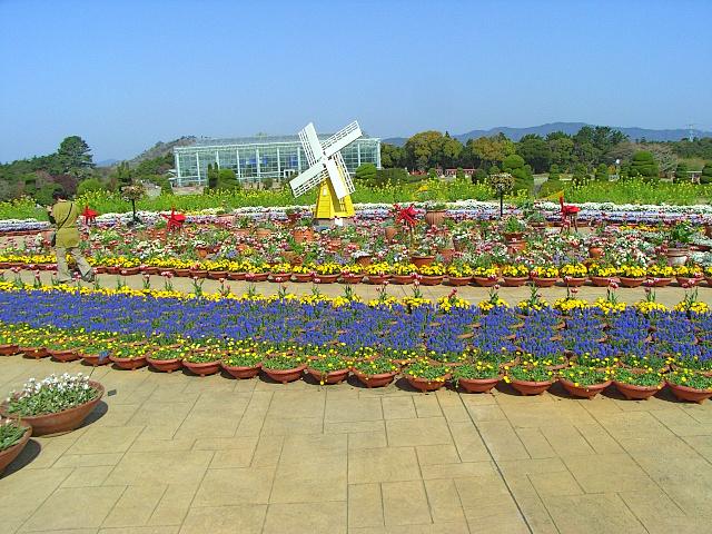 2008-Spring0099