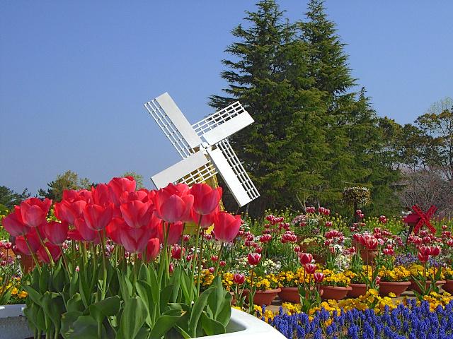 2008-Spring0101