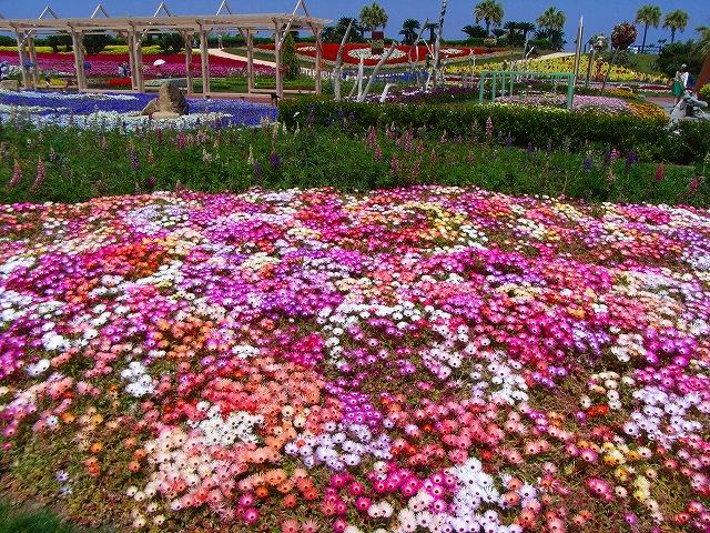 flower festa-05.jpg