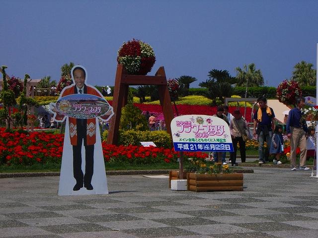 flower festa-02.jpg