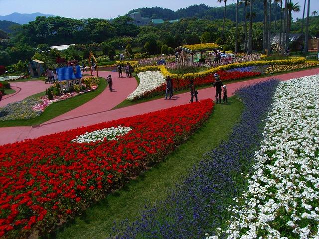flower festa-11.jpg
