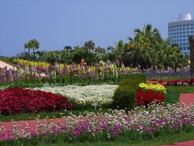 flower festa-18.jpg