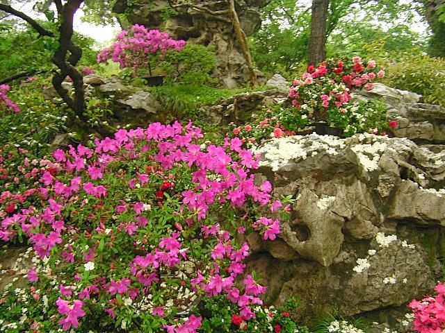 CHINA05-05-004.jpg