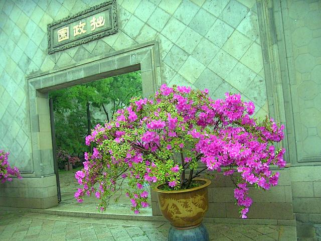 CHINA05-05-032.jpg