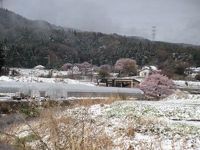 群馬の雪03