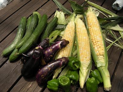 群馬 夏野菜
