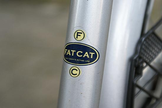 fatcat01
