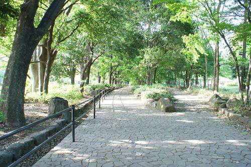 砧公園02