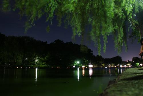 石神井公園 灯籠流し03