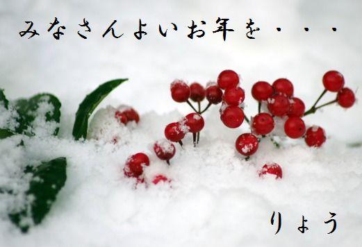 snow4kt