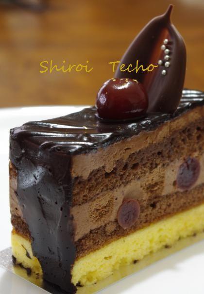 cake sk2