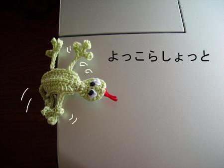 kano1_convert_20100613083932.jpg