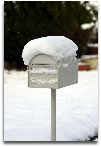 snow2k.jpg