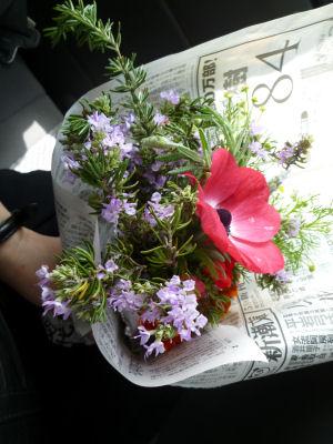 花とハーブが大好きでした