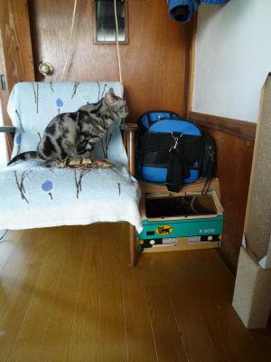 椅子の新定位置2