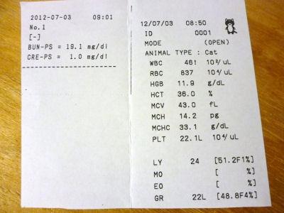 20120703血液検査結果