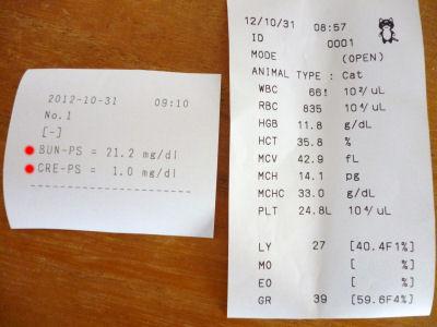 20121031血液検査