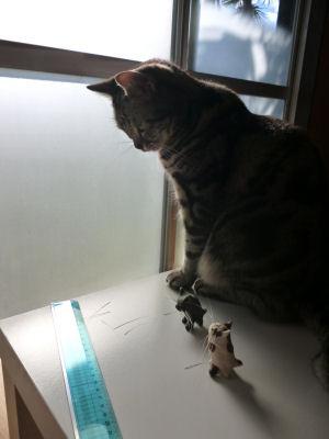 ひげとひげスタンドと猫