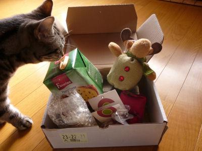猫やしきさん、ありがとう!